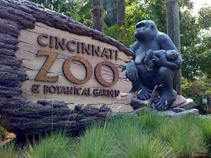 """Cincinnati Zoo """"Angry"""" about Harambe the Gorilla memes"""
