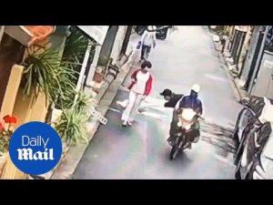 Astonishing moment thieves on motorbike seize pet dog – Daily Mail