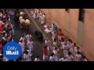 Bulls rampage through streets in annual Spanish festival – Daily Mail