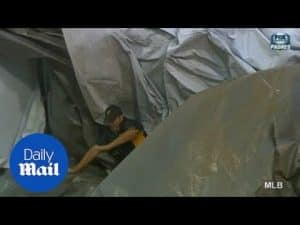 Grounds crew member gets caught in 'tsunami' of tarpaulin – Daily Mail