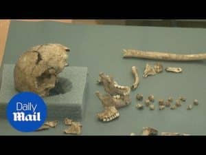 Remains of earliest English colony in America uncovered – Daily Mail