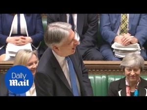 'Tigger-like': Philip Hammond jokes about not being Eyore – Daily Mail