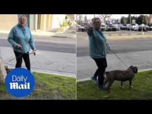 Woman goes on racist rant after being asked to pick up after dog – Daily Mail