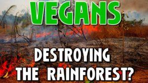10 Vegan Myths Debunked (For & Against)
