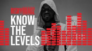 Know The Levels Novelist